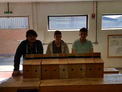 Grantham College Carpentry students make bird boxes for Woodhead Group
