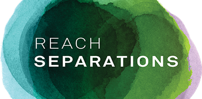 Reach Separations logo(EleanorAncliffe).png